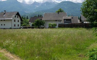 Buildable Plot in Kamnje