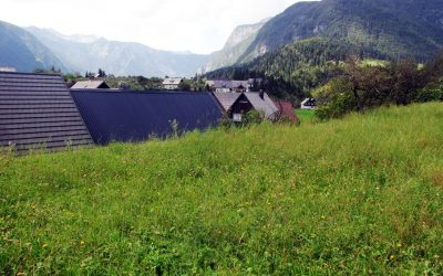 Buildable plot with Project in Stara Fužina