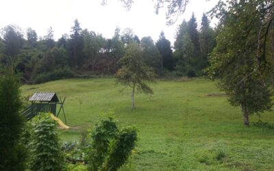 Vacant plot with the view